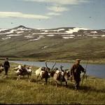 Klovjerajd Melätno, Jåhkågasska sameby 1958.